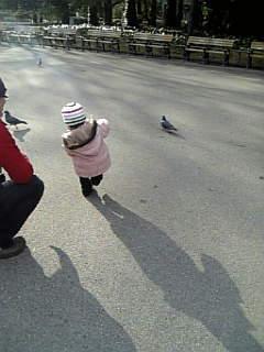 よちよち散歩