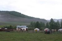 mongol_mogie_gel